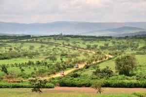Rwanda Africa