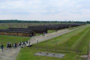 70 years after Auschwitz – deliberate attempts to rewrite history