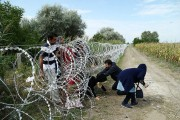 OSCE calls for respecting migrants' dignity