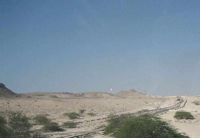 India seeks joint development of oil, gas fields in Qatar